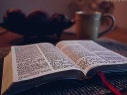bible-1031288_1280
